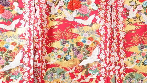 20170206 衣装 色打掛 ドレス01_006 - コピー